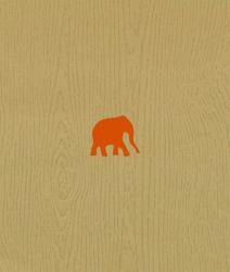 The Wood That Doesn't Look Like an Elephant