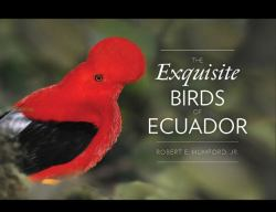 The Exquisite Birds of Ecuador